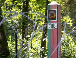 Литовская погранслужба предлагает установить на границе с Беларусью сетчатый забор